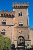 Bolgheri castle — Stock Photo