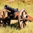 Field cannon — Stock Photo