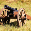 Stock Photo: Field cannon