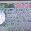 Fragment of visa — Stock Photo