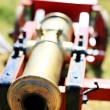 Cannon — Stock Photo #37116257