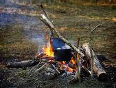 Campfire — Stockfoto