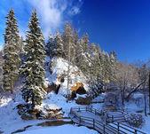 Paisaje de invierno con nieve y bosques — Foto de Stock