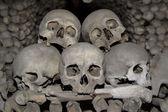 Skull pile — Stock Photo