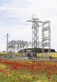 Electric station with poppies — Stock Photo