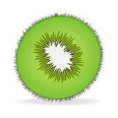 Fresh kiwi fruit Slice isolated on white background — Stock Vector