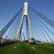 Stock Photo: Anzac Bridge in Sydney Covered in Grass