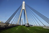 Anzac Bridge in Sydney Covered in Grass — Stock Photo