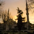 The Blue Mosque in Istanbul, Turkey. — Stock Photo #37227185
