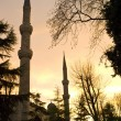 The Blue Mosque in Istanbul, Turkey. — Stock Photo