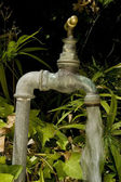 Using water in a drought. — Stock Photo