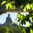 The Tian Tan Buddha — Stock Photo #37303983