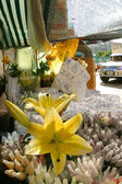 Flowers in Market — Stock Photo