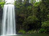 Waterfall — Stok fotoğraf