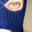 Stock photograph of attractive womwearing balaclava. — Stock Photo #37324145