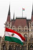 Parlamento binası — Stok fotoğraf