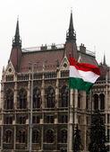 здание парламента — Стоковое фото