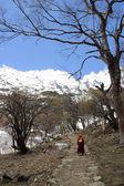 山の範囲で男 — ストック写真