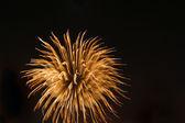 Fyrverkerier exploderar — Stockfoto