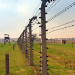 Auschwitz concentration camp — Stock Photo #37409607