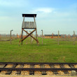 Auschwitz concentration camp — Stock Photo #37409679