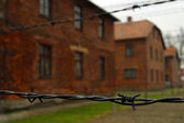 The electric fence in Auschwitz — Stock Photo