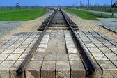Train to death at Auschwitz — Stock Photo