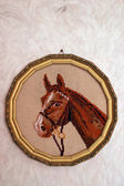 Embroidery of a horse — Stock Photo