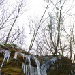 Icicles forming on rocks — Stock Photo #37422417