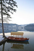 Boat sits still on Lake Bled — Стоковое фото