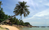 Perfect Beach on Koh Tao — Stock Photo