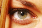 Human eyes — Stock Photo