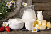 Rural dairy products  — Stock Photo