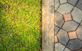 Grass floor and floor brick — Foto Stock