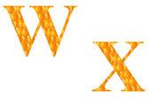 Alphabet W and X — Stock Photo