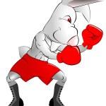 ������, ������: Boxer