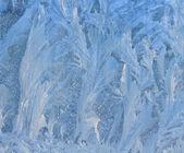 Frosty natural pattern on winter window — Stock Photo