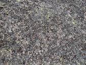La textura del detalle de la piedra. — Foto de Stock