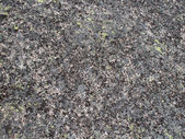 La texture di dettaglio della pietra. — Foto Stock