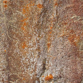 The detail texture of stone. — Stock Photo