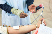 Staff taking blood sample from blood donation — 图库照片