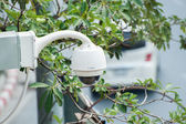 CCTV Camera Operating on road detecting traffic — Stock Photo