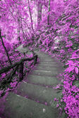 Imagine Pink forest with stair — Stockfoto