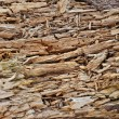 Stock Photo: Rotten wood texture