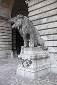 Lion statue in Budapest — Stock Photo