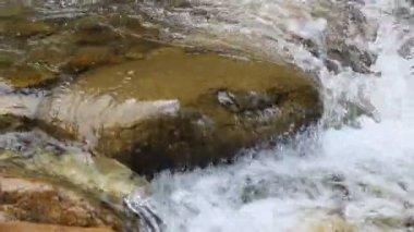 Rivière de montagne — Vidéo