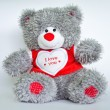 grau Teddy bear — Stockfoto