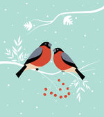 Two birds at winter. — Stock Vector