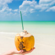 Tropical coconut on palm against turquoise sea at Caribbean beach — Stock Photo