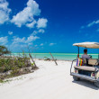 Young man driving on a golf cart at tropical white beach — Stock Photo #50260327